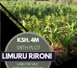 1/8TH LIMURU, RIRONI LAND FOR QUICK SALE