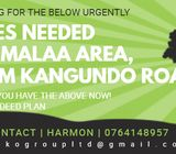 URGENTLY LOOKING FOR LAND IN MALAA WITH TITLE