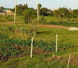 Prime plots for sale in Ruiru,Murera 40x60