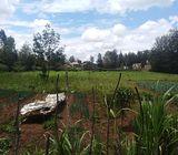 1/4 acre plots Kamiti rd