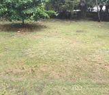 14 Acres Nairobi (Donholm)