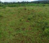 8 Acres Naivasha (KARATI)