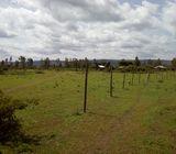 8 Acres Njoro Town (CBD)