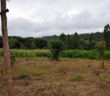 Kiambu Mboi Kamiti Residential Prime 50 by 100 Plots, Near Migaa