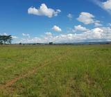 21 Acres Timau (Ethi)