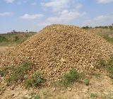 53 Acres Ballast Land (Katani) Machakos