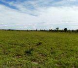 Plot for sale Juja farm