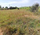 Thika Kabati 1/4 acres for sale