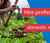 Vetted and Trained Domestic Workers, Nannies, House Managers, Babysitters
