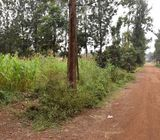 1/2 Acre Plot For Sale in Mukuyu Court, Thome