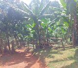 Land for sale on kiambu road.